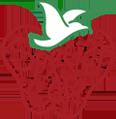 special-care-logo